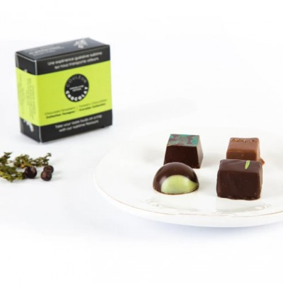FOREST CHOCOLATES TRAVELER COLLECTION- dark Chocolate - Couleur Chocolat